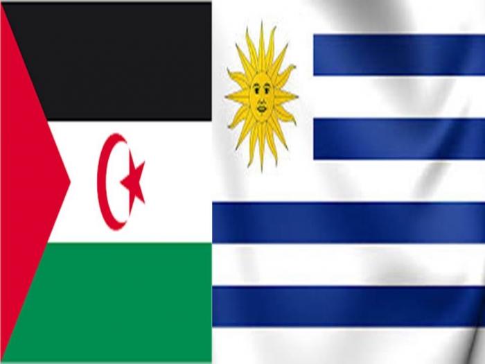 Resultado de imagen para banderas uruguay rasd